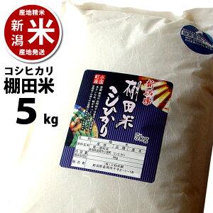 【令和2年度産】【あす楽】【新潟】小国町産 棚田米 コシヒカリ 5kg (5キロ) ※品質保持用の窒素置換パック代金を含む【新潟米】