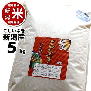 新潟県産 こしいぶき 5kg【あす楽】【令和2年度産】【本州送料無料】 ※ 品質保持用の窒素置換パック代金含む【新潟米】