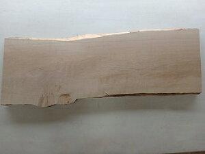 楓 メープル 一枚板 耳付き 天板 カエデ 木材 材木 無垢 天板のみ