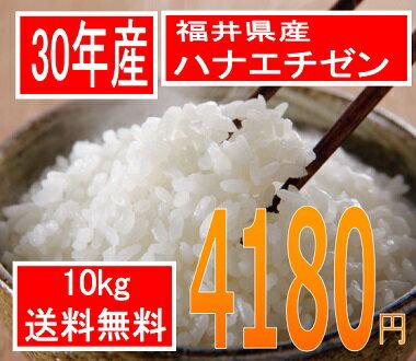 送料無料、粒揃い米処福井の美人米30年産  福井県産ハナエチゼン 10kg美人画の米袋で全国直送