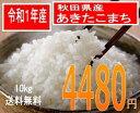 送料無料でお届け令和1年産 秋田県産あきたこまち10kg