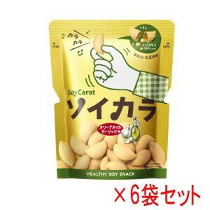 ソイカラ (SoyCarat) オリーブオイルガーリック味 6袋セット (27g×6)