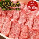 【特上高級霜降り焼肉】黒毛和牛A4,A5ランク・特上ロース 焼肉 500g・ギフト対応 国産 和牛 高級肉 お肉 A5 お取り寄…