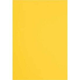 カウネット 色画用紙 四つ切 みかん1セット(5枚×20入)