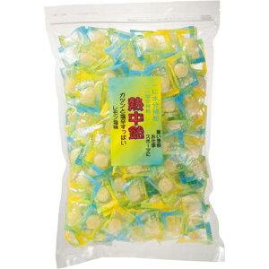 井関食品 熱中飴(業務用) レモン塩味 1kg入×3