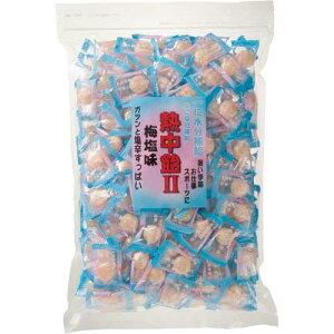 井関食品 熱中飴(業務用) 梅塩味 1kg