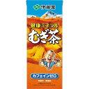 伊藤園 健康ミネラルむぎ茶(紙パック) 250ml×24本