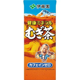伊藤園 健康ミネラルむぎ茶(紙パック) 250ml 24本