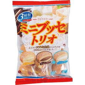 天恵製菓 ミニブッセトリオ140g×3