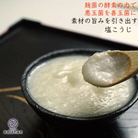 麹菌の酵素がたっぷりの塩麹 250g 5個 パウチ ギフト プレゼント 贈り物 お中元 お歳暮