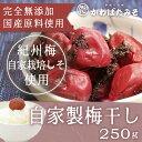 お中元 暑中見舞い ギフト 昔ながらの無添加梅干し 和歌山紀州産 みなべの小梅 しそ梅 250g ポイント消化