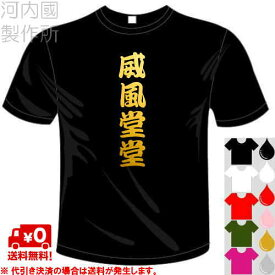 河内國製作所 「威風堂堂Tシャツ」全5色。四文字熟語漢字おもしろTシャツ 文字T-shirt おもしろてぃーしゃつ 半袖ドライTシャツ メール便は送料無料