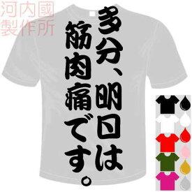河内國製作所 「多分、明日は筋肉痛です。Tシャツ」全5色。センテンス系おもしろTシャツ 文字T-shirt おもしろてぃーしゃつ 半袖ドライTシャツ メール便は送料無料