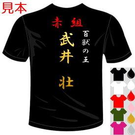 簡単に作れる特攻服系オリジナルTシャツ(カラー5色) おもしろTシャツ。ユニフォーム、イベントやコンサート、体育祭、文化祭に最適。セミオーダーメイド 送料無料 河内國製作所【代引き決済不可商品】