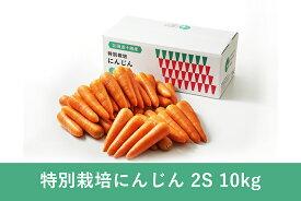 【常温便送料無料】北海道産 洗いにんじん 2S 10kg【規格外品】