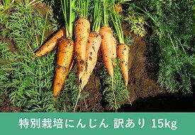 【常温便送料無料】【訳あり】北海道産 洗いにんじん 15kg B級品【人参ジュースに!!】