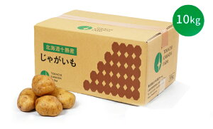 【常温便送料無料】北海道産 越冬じゃがいも 小玉Sサイズ 10kg はるか ホッカイコガネ こがね丸 【規格外ちょっと訳あり】
