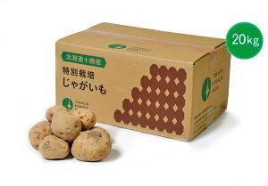 【常温便送料無料】【訳あり】北海道産 じゃがいも 20kg メークイン ホッカイコガネ キタアカリ B品