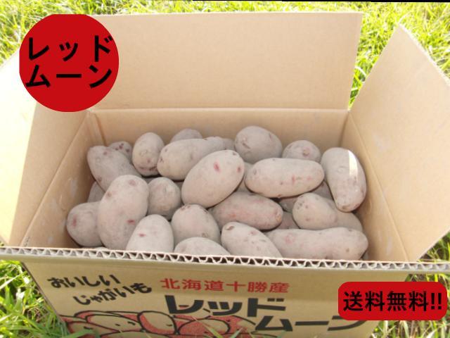 【ポイント5倍】【常温便送料無料】北海道産 希少な越冬じゃがいも レッドムーン LM-2Lサイズ混 10kg