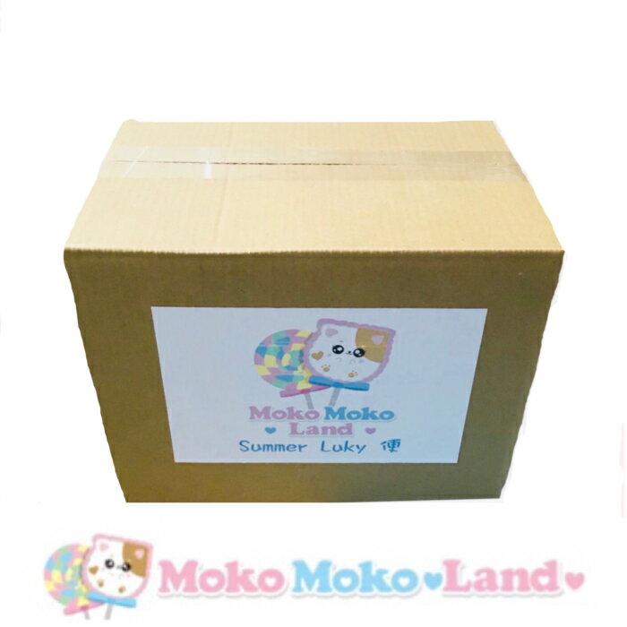 MokoMoko Land Summer Lucky 便 海外スクイーズ 詰め合わせBOX 数量限定 スクイーズ