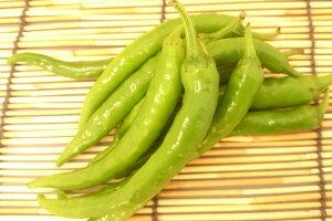 【ブランド京野菜】 京都府産 伏見とうがらし(100グラム入)