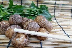 【旬のオススメ】京都丹後産 浜詰小芋(Sサイズ200g・約28個)