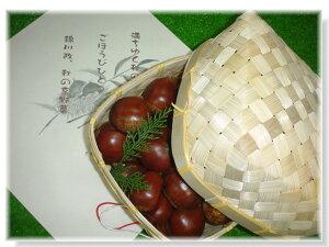 【ブランド京野菜】丹波栗(大サイズ1.5kg)竹籠入り