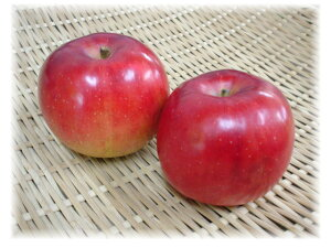 【旬のオススメ】青森県産 紅玉 林檎(1個)