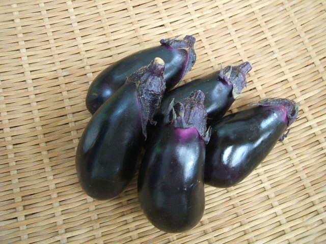 高知県産他 茄子(1pk5本入り)