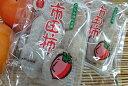 長野県産 市田柿(いちだがき)(約170g入)