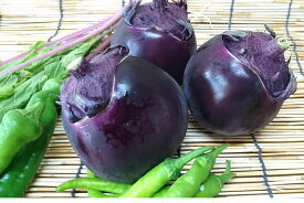 【ブランド京野菜】 京都府産 賀茂茄子(Lサイズ、1個)