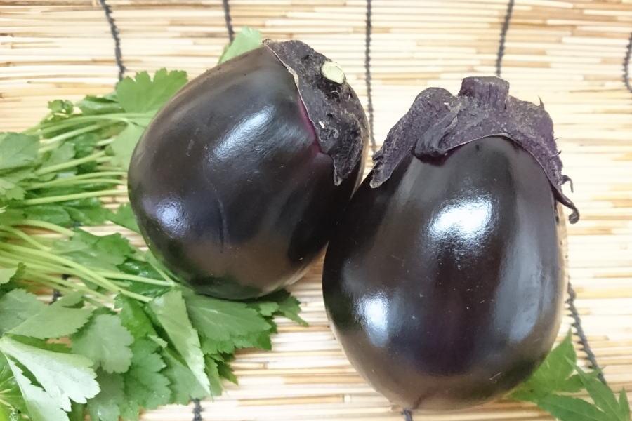 大阪府産 丸茄子(1個)