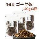種入りゴーヤ茶 100g×3袋美味しいゴーヤー茶 【国産 健康茶 ゴーヤ茶】【送料無料】【ノンカフェイン ゴーヤ茶】【大…