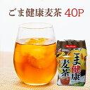 巷で大流行の胡麻麦茶ペットボトル!!日々経済的に飲み続けるためにお得なティーパックタイプが登場☆ゴマ麦茶 500g…
