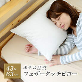 枕 ホテル仕様 パイプ入り 送料無料 43×63 肩こり 首こり 高め 約20cm 高品質 快眠 安眠 まくら おすすめ 02P26Mar16
