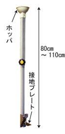 ハラックス 簡易播種機 TM-800 スイートコーン 大豆 野菜種まき器
