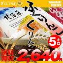 28年産 北海道産 ふっくりんこ 5kg <白米> 【送料無料】【北海道米 送料込み 米 お米 真空パック選択可】