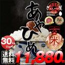 29年産 北海道産 あやひめ 玄米 30kg (5kg×6袋セット)<玄米/白米/分づき米> 【送料無料】【北海道米 送料込み 米…