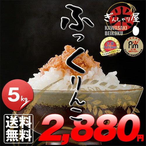 29年産 北海道産 ふっくりんこ 5kg <白米> 【送料無料】【北海道米 送料込み 米 お米 真空パック選択可】