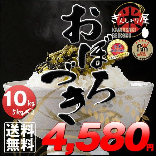 29年産 北海道産 おぼろづき 10kg (5kg×2袋セット)<白米>【送料無料】【北海道米 送料込み 米 お米 真空パック選択可】