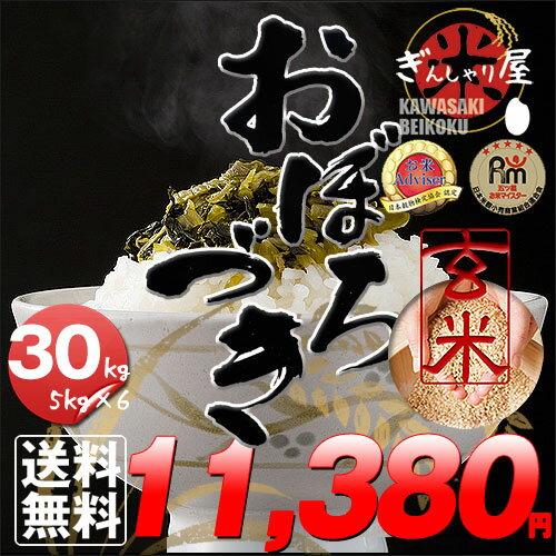 29年産 北海道産 おぼろづき 玄米 30kg (5kg×6袋セット)<玄米/白米/分づき米>【送料無料】【北海道米 送料込み 米 お米 真空パック選択可】