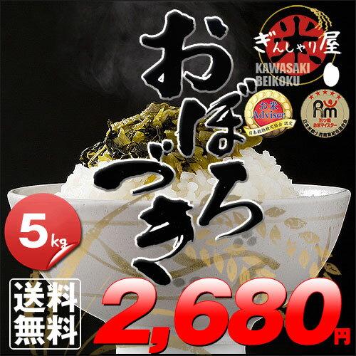 29年産 北海道産 おぼろづき 5kg <白米>【送料無料】【北海道米 送料込み 米 お米 真空パック選択可】