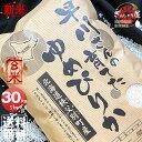 新米 令和2年産 早川さんの育てた 北海道雨竜郡秩父別産 ゆめぴりか 玄米 30kg (5kg×6袋セット) <玄米/白米/分づ…
