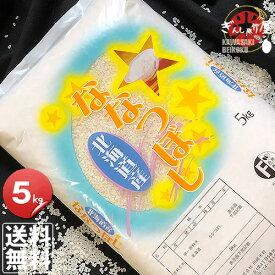 30年産 北海道産 ななつぼし 5kg <白米>【送料無料】【北海道米 送料込み 米 お米 真空パック選択可】