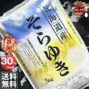 令和2年産 北海道産 そらゆき 30kg 玄米 (5kg×6袋セット)<玄米/白米/分づき米> 【送料無料】【北海道米 送料込み…
