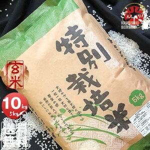 令和2年産 特別栽培米 北海道産ななつぼし 玄米 10kg (5kg×2袋セット) <玄米/白米/分づき米> 【送料無料】【北海道米 送料込み 米 お米 真空パック選択可】