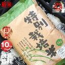 新米 令和元年産 栽培地域限定 JA新すながわ産 特別栽培米 ななつぼし 玄米 10kg (5kg×2袋セット) <玄米/白米/分づき米> 【送料無料】【北海道米 送料込み 米 お米 真空パック選択可】