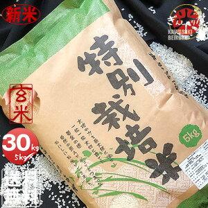 新米 令和2年産 特別栽培米 北海道産ななつぼし 玄米 30kg (5kg×6袋セット) <玄米/白米/分づき米> 【送料無料】【北海道米 送料込み 米 お米 真空パック選択可】
