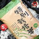 令和元年産 栽培地域限定 JA新すながわ産 特別栽培米 ななつぼし 5kg <白米> 【送料無料】【北海道米 送料込み 米 お米 真空パック選択可】