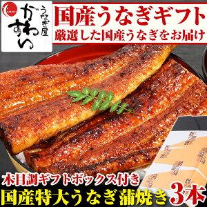お中元 国産特大うなぎ蒲焼き 170g×3本セット 送...